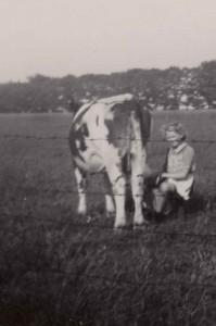 Flora melkt de koe