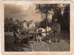 Ponywagen Dhr. en Mw. de Jongh en gasten