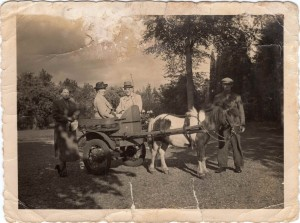 Mijn ouders met gasten in de ponywagen.